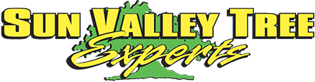 Sun Valley Tree Experts