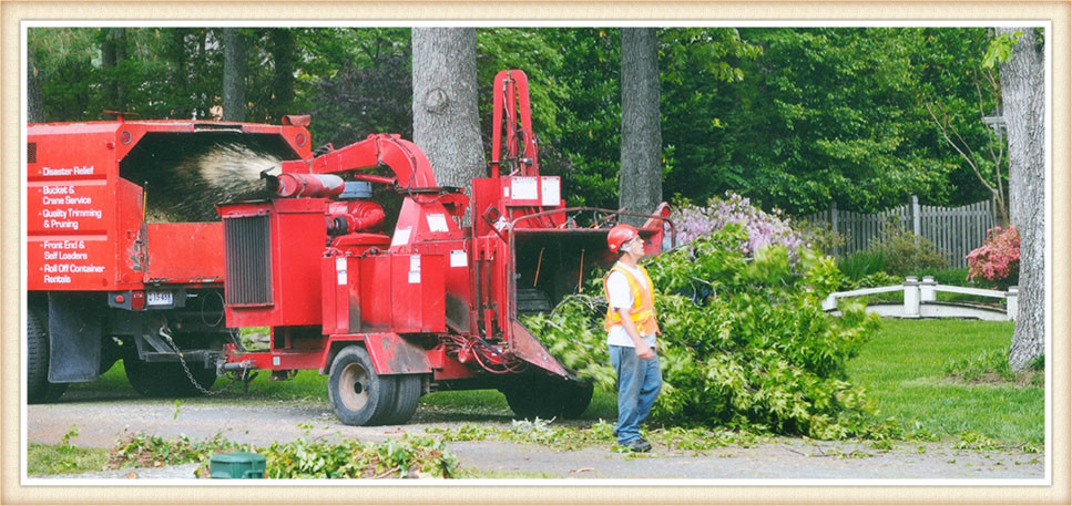 wood-chipper-virginia-beach-va